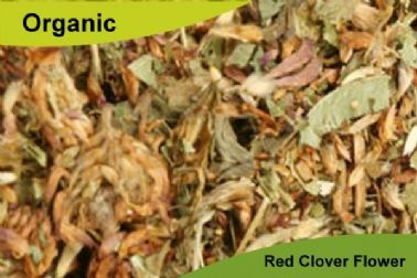 Organic Red Clover Flower 100gm
